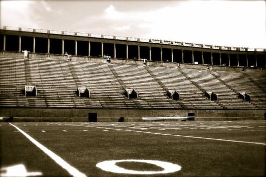 Harvard's field